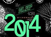 Fiesta Año Nuevo 2014