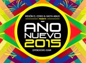 Año nuevo 2015 en Centro El Cerro