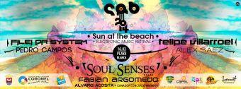Festival Electrónico Sun at the Beach 2014