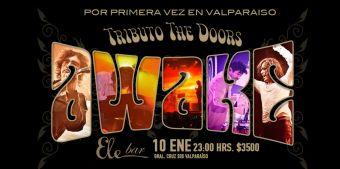 Awake Tributo The Doors se presenta en Valparaíso