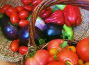 ¿Por qué son mejores las verduras orgánicas?