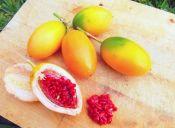 Dato Cookcina: frutos exóticos y sus beneficios