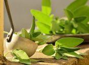 Cómo usar la Salvia para cocinar