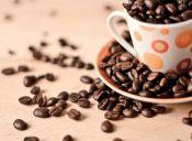 ¿Qué alimentos pueden sustituir al café?