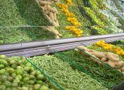 ¿Cuál es la diferencia de los alimentos orgánicos?