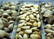 Cómo congelar mariscos con conchas