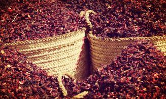 3 tragos con flor de Jamaica... ¡saludables y deliciosos!