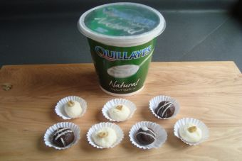 Prepara Trufas de chocolate y Yoghurt Natural