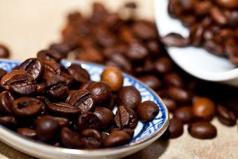 Tipos de café y sus diferencias