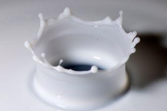 Dato Cookcina: diferencias entre la leche líquida y en polvo