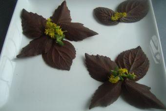 Cómo hacer Hojitas de Chocolate