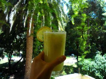Receta: Granizado de limón veraniego
