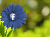 Problemas que las parejas tienen por culpa de Facebook