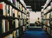 Pequeñas cosas increíbles: las bibliotecas
