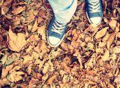 Los estilos de zapatillas más populares para este 2016