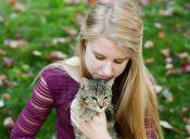 ¿Gatos anti-estrés?