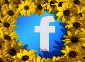 Los 6 jotes más comunes de Facebook