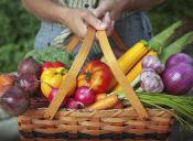 5 tiendas online de alimentación saludable