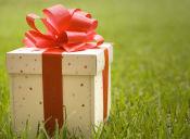Pequeñas cosas increíbles: ¡los auto-regalos!