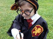 Se publicará la octava parte de Harry Potter