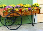 Pequeñas cosas increíbles: jardinear