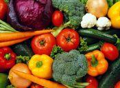 Quiero bajar de peso, ¿ir o no al nutricionista?