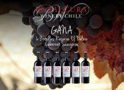 Concurso Día del Padre: ¡Gana una caja de 6 vinos Botalcura! // GANADORA