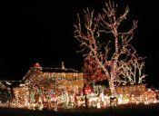 Pequeñas cosas increíbles: las luces de Navidad