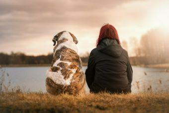 Peleas entre amigos: perdonar es divino