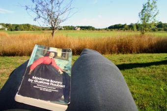 Por qué odié a Madame Bovary