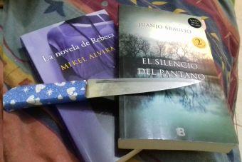 Si leer de amor te aburrió, ¡bienvenida novela negra!