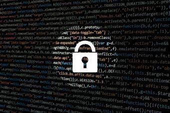 Motores de búsquedas enfocados en privacidad: ¿Cómo se explica su crecimiento?