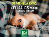 Regalonea a tu mascota con la Expo Mascotas y Animales