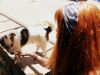 Diez regalos navideños ideales para un fanático de los perros