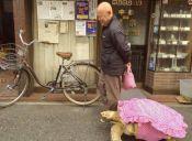 Anciano pasea con su tortuga africana por las calles de Tokio