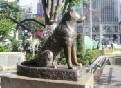 Celebran los 80 años de la muerte de Hachiko,