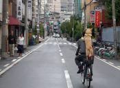 Japoneses arriendan perros para pasearlos