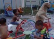 Video: Perro juega con niños en carrusel