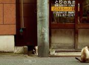 Ahora podrás conocer Japón desde la perspectiva de un gato