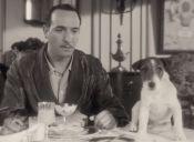 Con 13 años murió Uggie, el famoso perro de El Artista