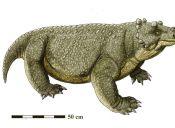 Científicos encontraron a la primera especie en caminar en cuatro patas