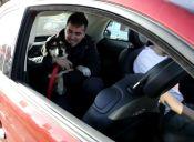 Fiat incentiva la adopción de perros en Argentina