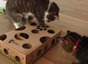 5 juguetes para gato que puedes hacer tú mismo