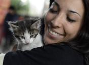 El GAM tendrá una nueva jornada de adopción de mascotas