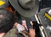 Perro es rescatado de la corriente en Colombia