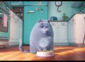 Las mascotas llegarán al cine y acá te mostramos el trailer
