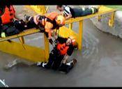 Bomberos rescatan a tres caballos que caen al agua