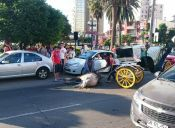 Caballo de Coche Victoria se Desploma en Transitada calle de Viña del Mar