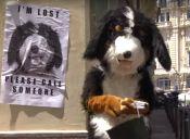 Hilarante y conmovedor video de Rémi Gaillard disfrazado de perro