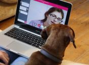 PawSquad atenderá a perros a través de video llamada